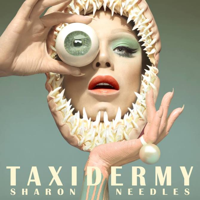 sharonneedles_taxidermy